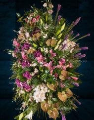 Palma de flores con Anthurium y verdes